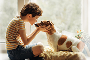 A little boy kissing a dog on the nose shows us how animals improve our lives.