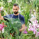 Man spraying flowers in a garden.