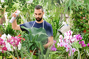 Man spraying flowers in a garden.